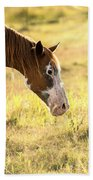 Horse In The Countryside  Beach Towel