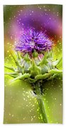 Silybum Eburneum Milk Thistle Beach Towel