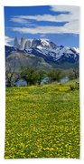 Springtime In Torres Del Paine Beach Towel