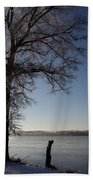 Trees In Ice Series Beach Towel