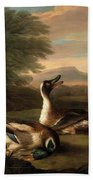 Two Drakes In Landscape Beach Towel