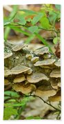 Polypores 9155 Beach Towel