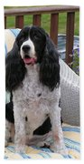 #940 D1034 Farmer Browns Springer Spaniel Beach Towel