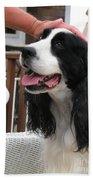 #940 D1041 Farmer Browns Springer Spaniel Good Girl Good Boy Attaboy Beach Towel