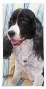 #940 D1042  Farmer Browns Springer Spaniel Beach Towel