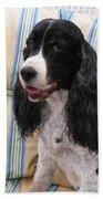 #940 D1043  Farmer Browns Springer Spaniel Smile Hidden Heart Beach Towel