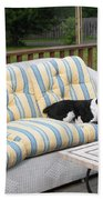 #940 D1094 Farmer Browns Springer Spaniel Together Beach Towel