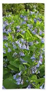 A Bed Of Bluebells Beach Towel