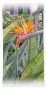 A Bird In Paradise Beach Towel