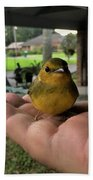 A Bird In The Hand Beach Towel