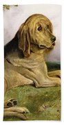 A Bloodhound In A Landscape Beach Towel