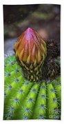 A Blooming Cactus Beach Towel