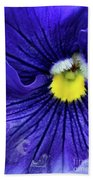 A Blue Pansy Beach Towel