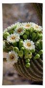 A Bouquet Of Saguaro Blossoms Beach Sheet