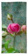 A Bud - A Rose Beach Towel