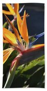 A Bunch Of Bird Of Paradise Flowers Bloomed  Beach Towel
