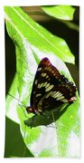 A Butterfly In The Sun  Beach Towel