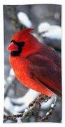 A Cardinal Day... Beach Towel