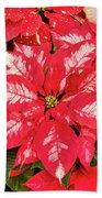 A Christmas Flower Beach Towel