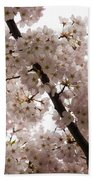 A Cloud Of Pastel Pink Cherry Blossoms Celebrating The Arrival Of Spring  Beach Towel