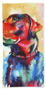 A Coat Of Many Colours - Labrador Beach Towel by Peter Williams