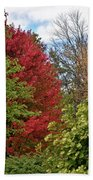 A Collection Of Fall Colours Beach Towel