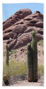 A Couple Of Cacti In Phoenix Beach Towel