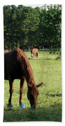 A Day At Chimney Field 1 Beach Towel