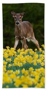 A Deer And Daffodils IIi Beach Towel