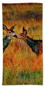 A Deer Kiss Beach Towel