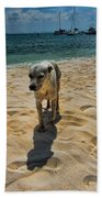 A Dog's Life Beach Towel