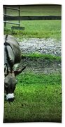 A Donkey And His Bird Beach Towel
