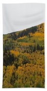 A Drive Throw The Forest In The Fall Beach Towel