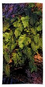 A Fern Botanical By H H Photography Of Florida Beach Towel