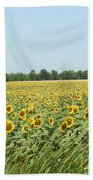 A Field Of Smiles Beach Towel