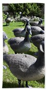 A Flock Of Decoys Beach Towel