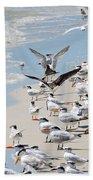 A Flock Of Seagulls Beach Towel