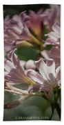 Peppermint Surprise Lily - A Floral Abstract Beach Towel