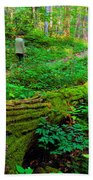 A Forest Stroll Beach Towel
