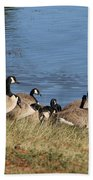 A Gathering Of Geese Beach Towel