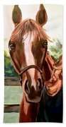 Wide Eyed Girl And Her Horse Beach Towel