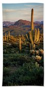 A Golden Sonoran Evening  Beach Towel