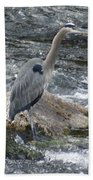 A Great Blue Heron At The Spokane River 3 Beach Towel