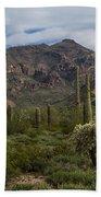 A Green Desert Forest  Beach Towel
