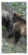 A Grizzly Moment Beach Towel