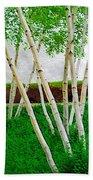 A Grove Of Birches 1 Beach Towel