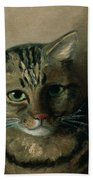 A Head Study Of A Tabby Cat Beach Towel