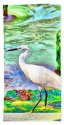 a heron is walking on a stair about the Grand Canal Beach Towel