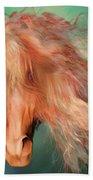 A Horse Called Copper Beach Towel