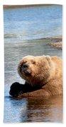 A Hot Day In The Hallo Bay Katmai National Park Preserve Beach Towel